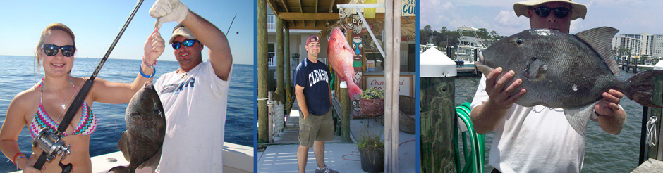 lady angler alabama trigger fishing dennis redding with red snapper, gulf shores alabama triggerfish