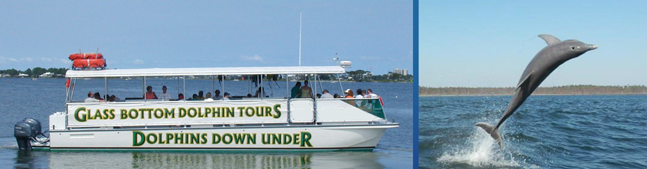 orange beach dolphin cruises