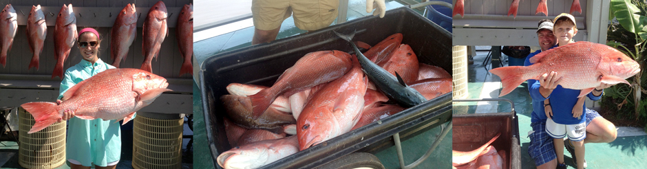 AL lady angler BIG red snapper bottom fishing catch alabama family fishing