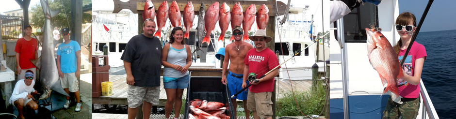 shark fishing charters alabama orange beach deep sea fishing catch lady angler gulf shores bottom fishing