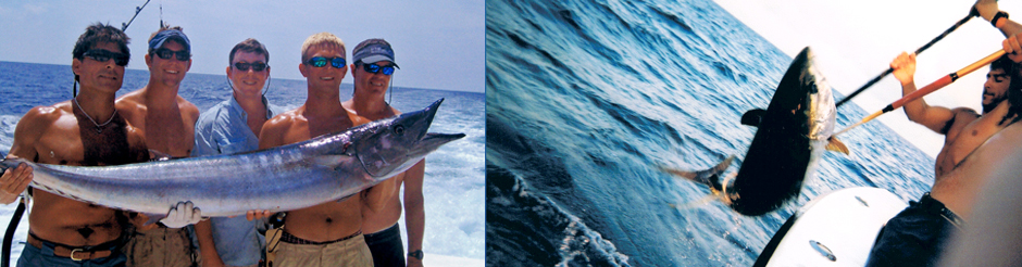 gulf of mexico wahoo yellowfin tuna blue blue water fishing