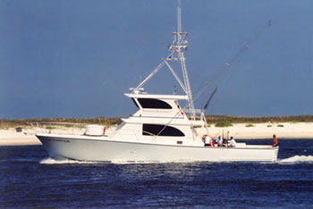 Sea Hunter charter boat luxury orange beach fishing charters