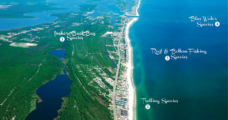 Alabama gulf coast fishing ariel view Perdido Pass