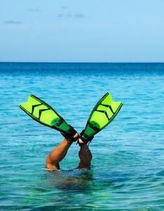 alabama gulf coast snorkeling