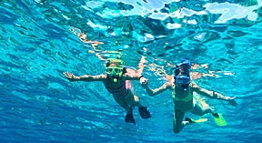 snorkeling orange beach al