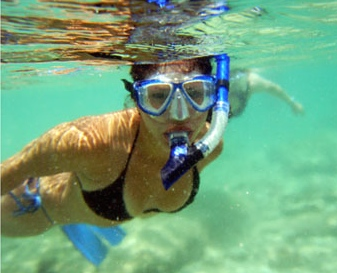 Coastal AL Adventures - The snorkeling guide to florida 10 spots for underwater exploring