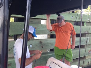 gulf shores al fishing guide