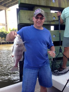 gulf shores inshore fishing sheepshead