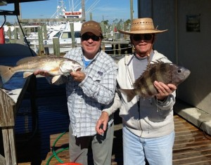 Greg Lein & father with redfish & sheepshead from inshore fishing orange beach al