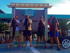 four men holding four big cobia caught deep sea fishing in Orange Beach AL Spring 2015