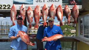 Catch of Red Snapper AL party boat Miss E June 1 2016