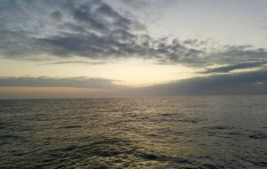 Calm Gulf of Mexico Gulf Shoes AL Feb '17