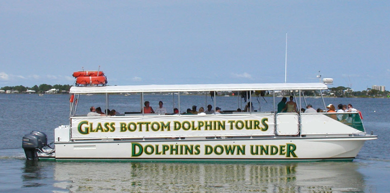 Dolphin Cruise Gl Bottom Boat
