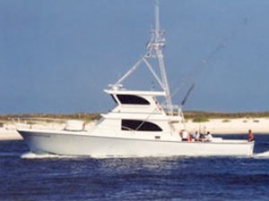 Luxury Fishing Charter Boats On The Al Gulf Coast Selection Of Boat Images Sea Hunter Orange Beach Charters